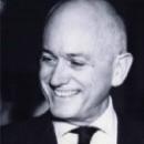 Kees de Vries, Organisational Psychology, Executive Coach